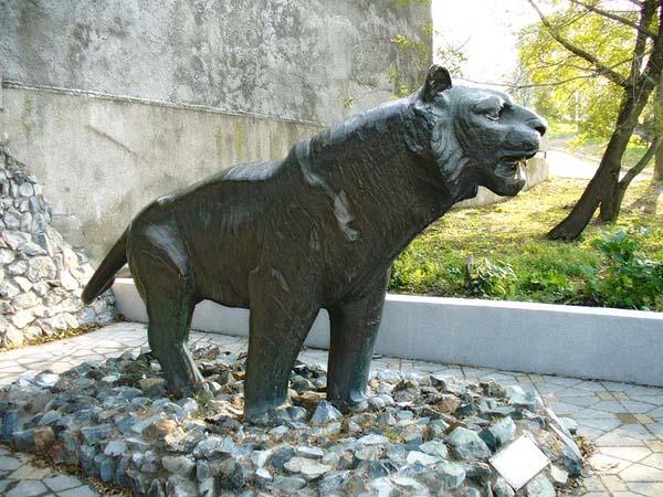 Памятник тигру - Владивосток