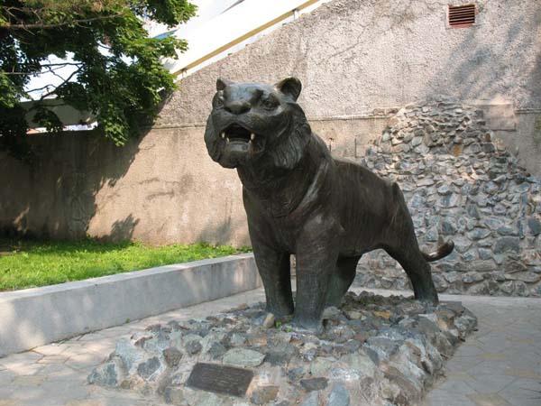 Памятник уссурийскому тигру - Владивосток