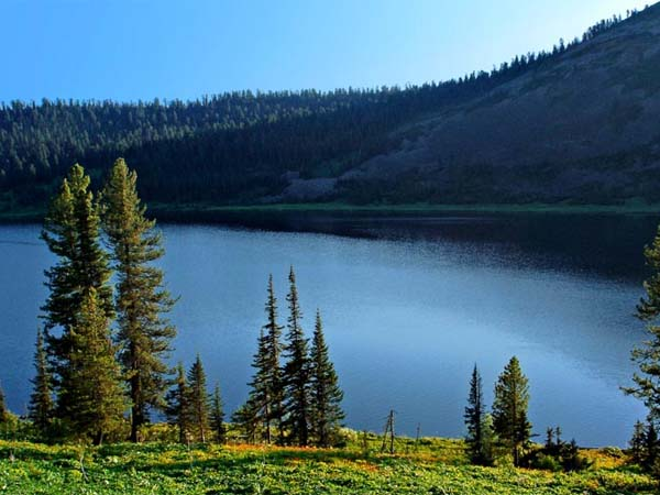 Самые известные памятники природы