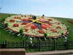 Цветочные часы в Москве
