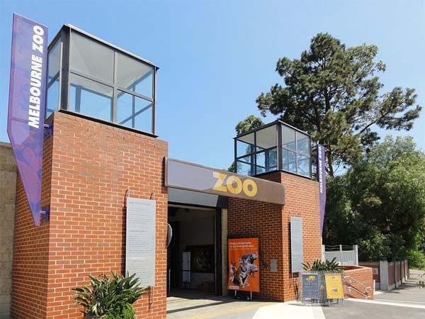 Зоопарк Мельбурна